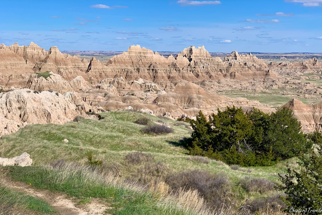 Large fields of green grasses leading to the layered rock formations at Badlands National Park in South Dakota