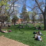 Peopel sitting on lawn in Boulder park