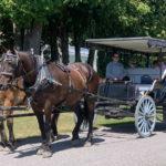 Horse drawn carriage on Mackinac Island