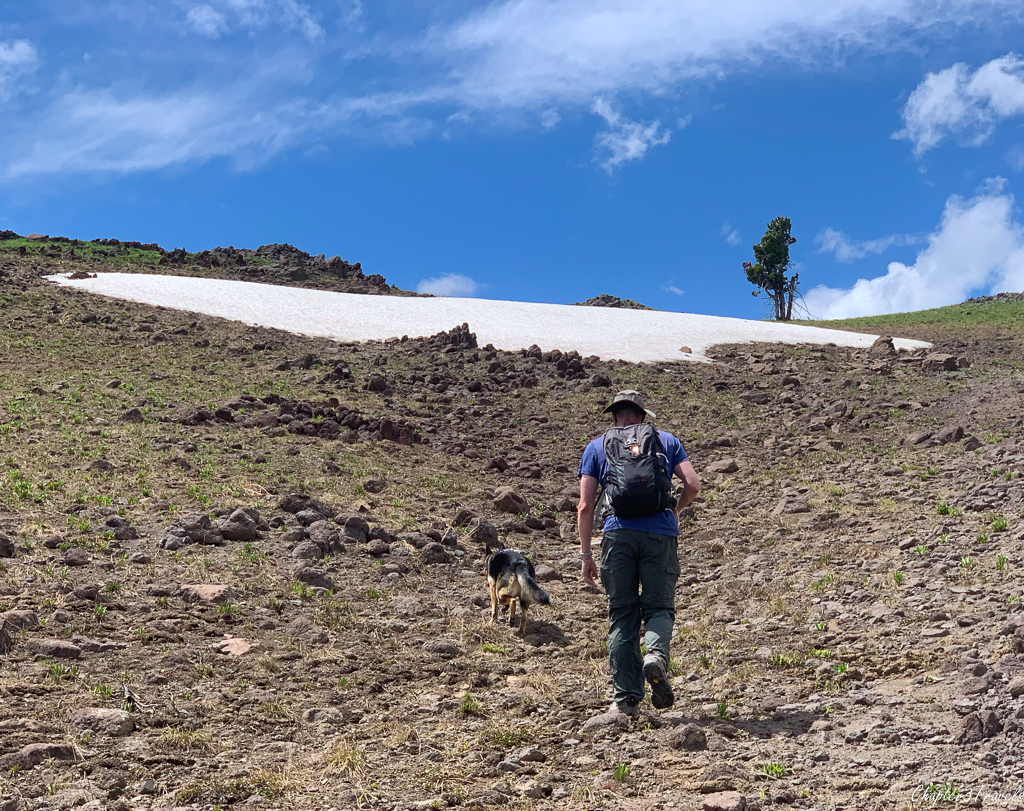 Kevin and Thor walking up a hill toward a snow patch