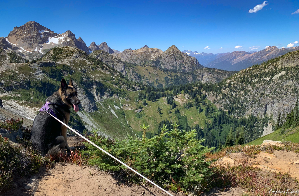 Thor looking at the mountain scenery in North Cascades National Park