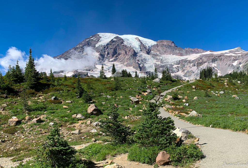 Mount Rainier from the Skyline Trail