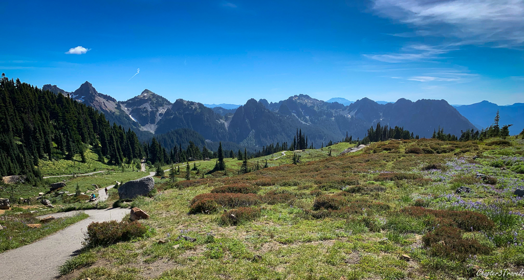 The Tatoosh Range from Mount Rainier