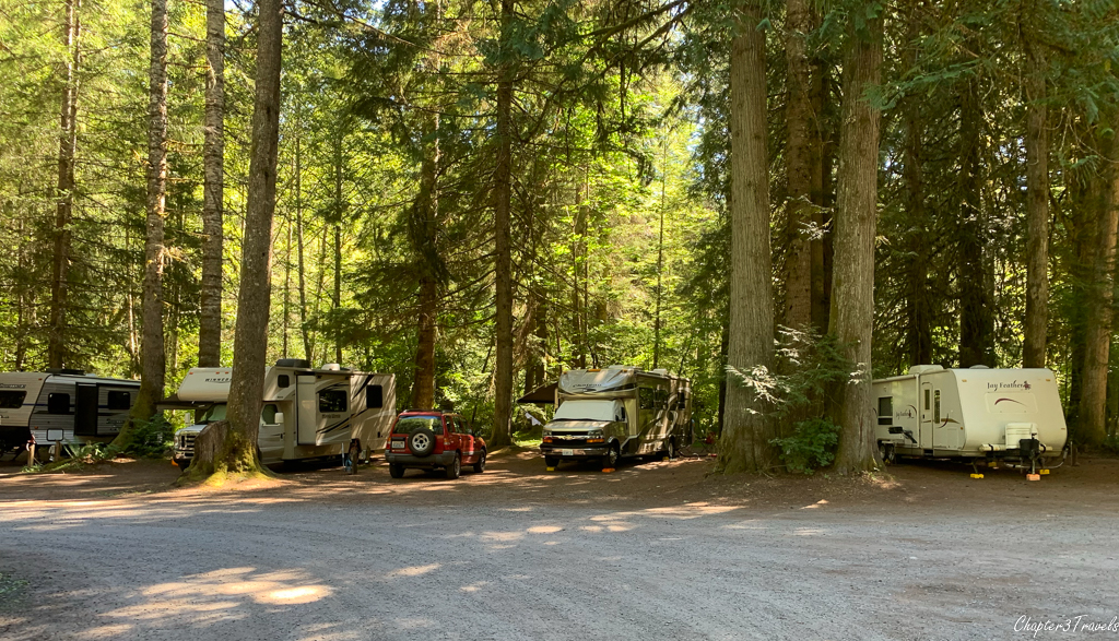 Campsites at Mounthaven Resort in Ashford, Washington
