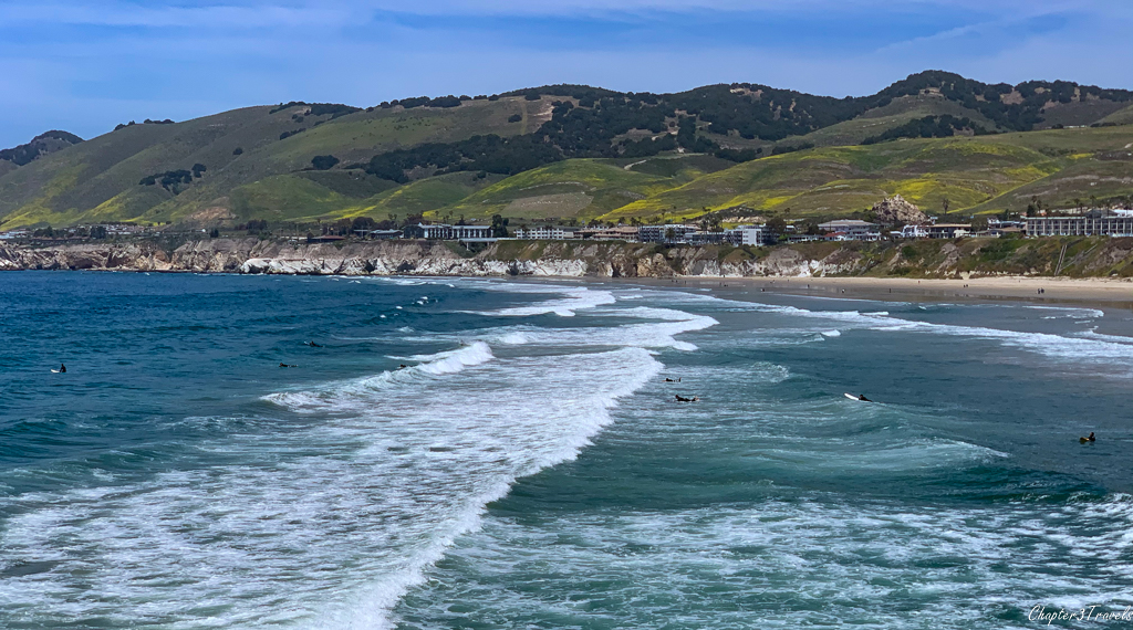 Surfers swimming in Pacific Ocean at Pismo Beach
