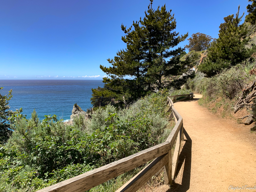 Walking path near ocean surrounded by trees and bushes