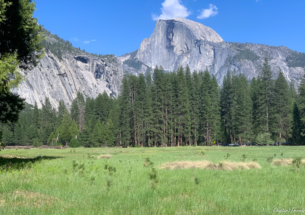 Half Dome behind a large green meadow