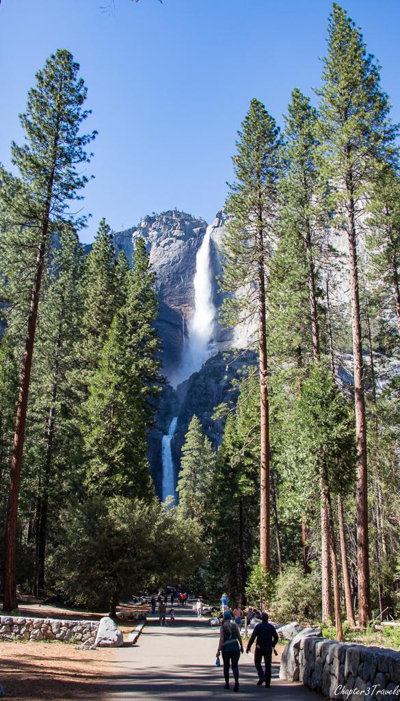 Visitors walking toward Upper and Lower Yosemite Falls