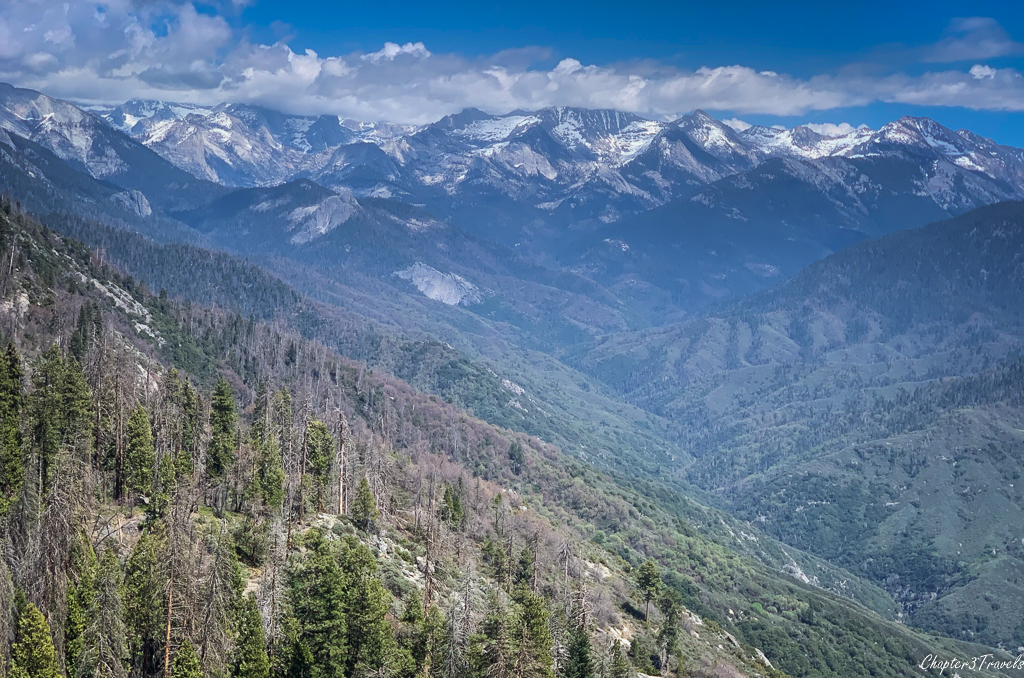 Snow capped mountains behind forested mountains