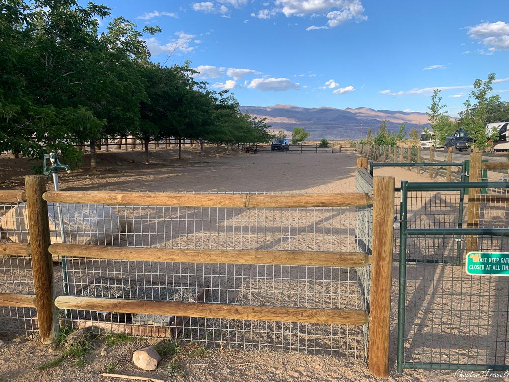 Dog park at Boulder Creek RV Resort in Lone Pine, CA